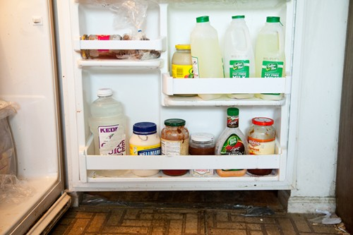 http://www.faithholland.com/files/gimgs/th-38_Fridge.jpg
